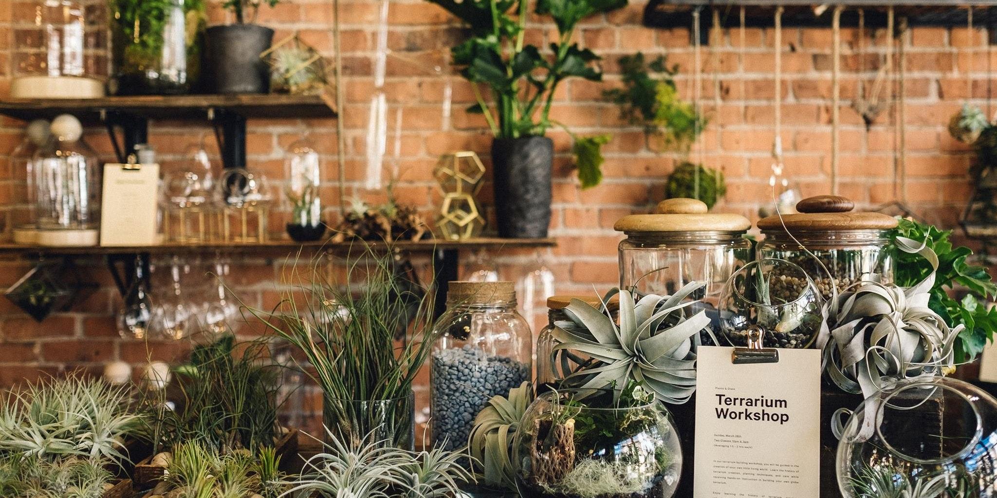 Glasswing Greenhouse