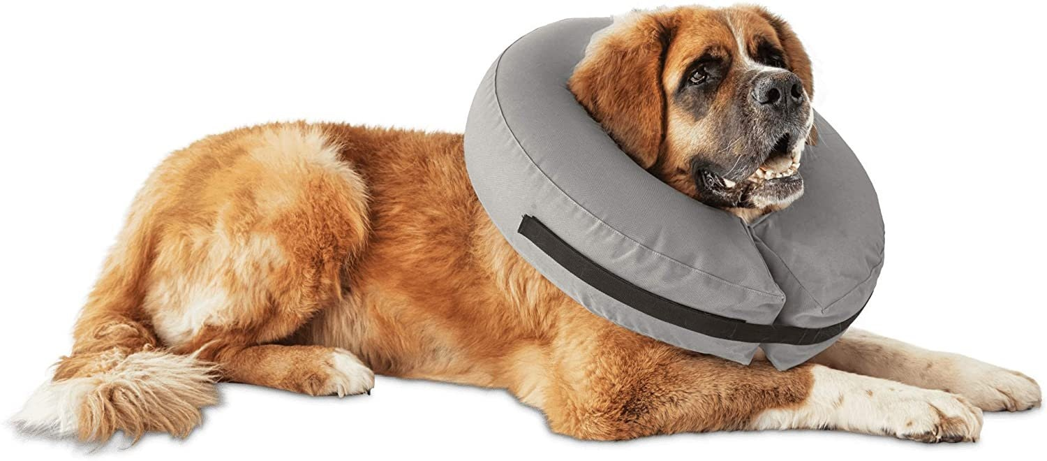 Well & Good Inflatable Collar for Dogs and Cats