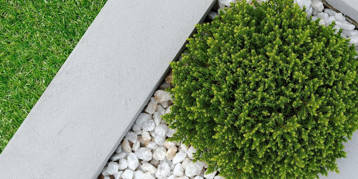 Dean Backholm Landscape Design