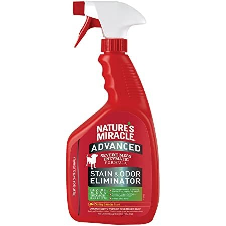 Nature's Miracle Advanced Stain and Odor Eliminator Foam Dog, for Severe Dog Messes