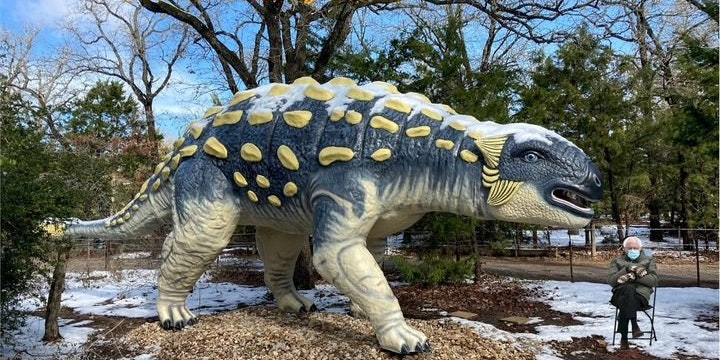 The Dinosaur Park
