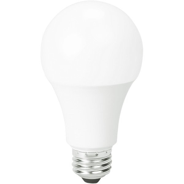 1600 Lumens - LED A19