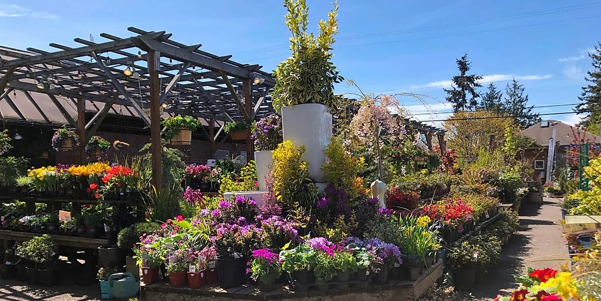 West Seattle Nursery and Garden Center