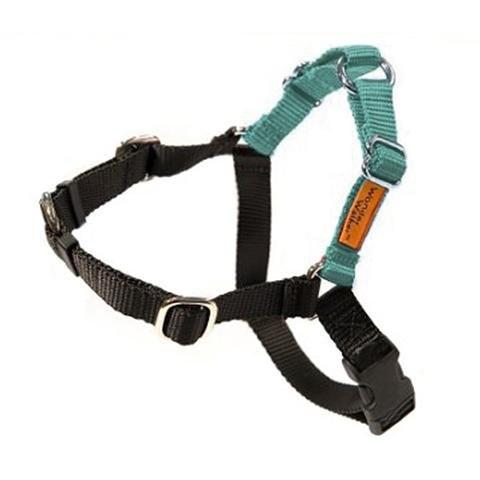Wonder Walker Dog Harness