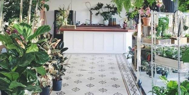 Solabee Flowers & Botanicals