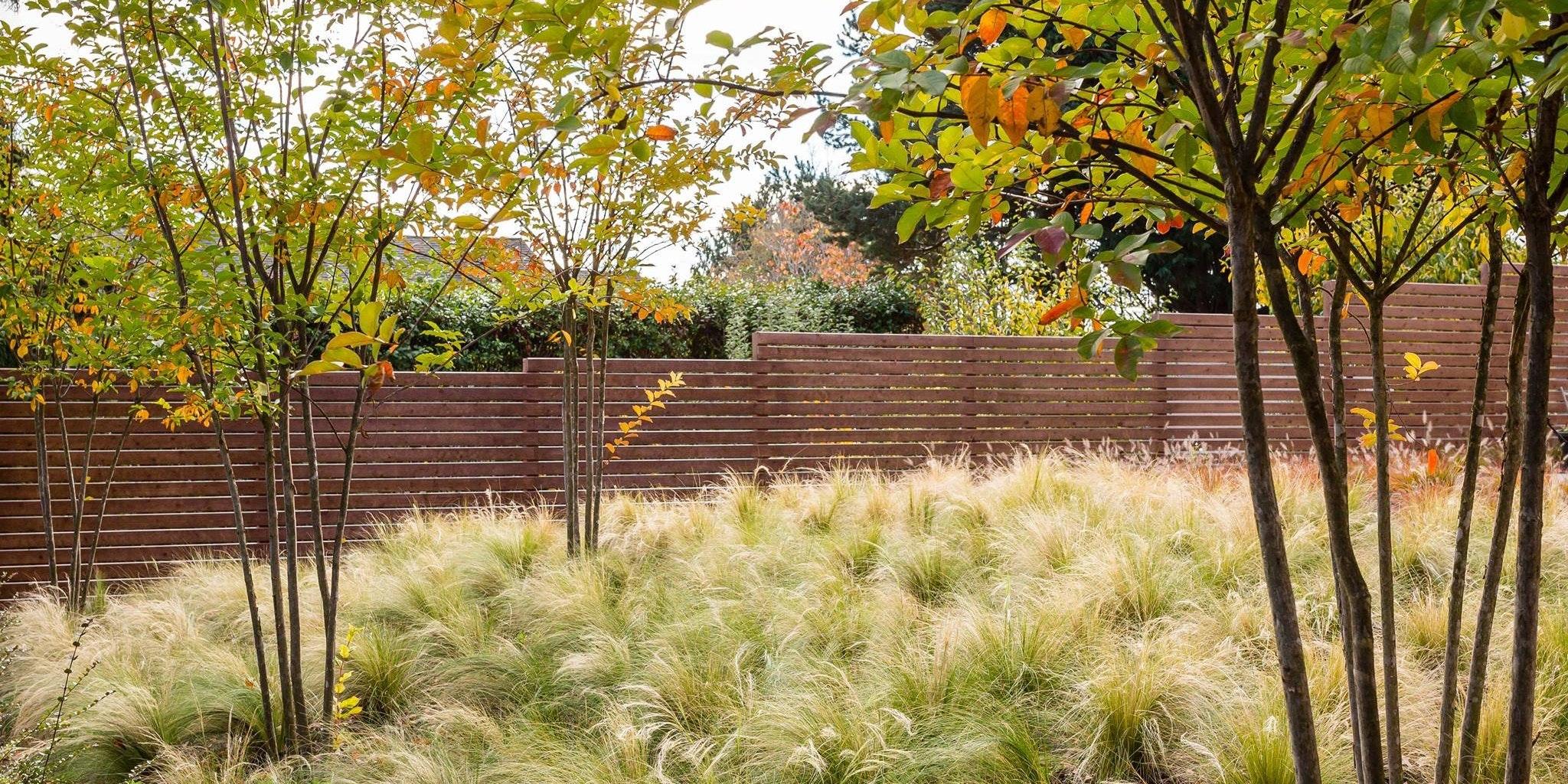 SCJ Studio Landscape Architecture