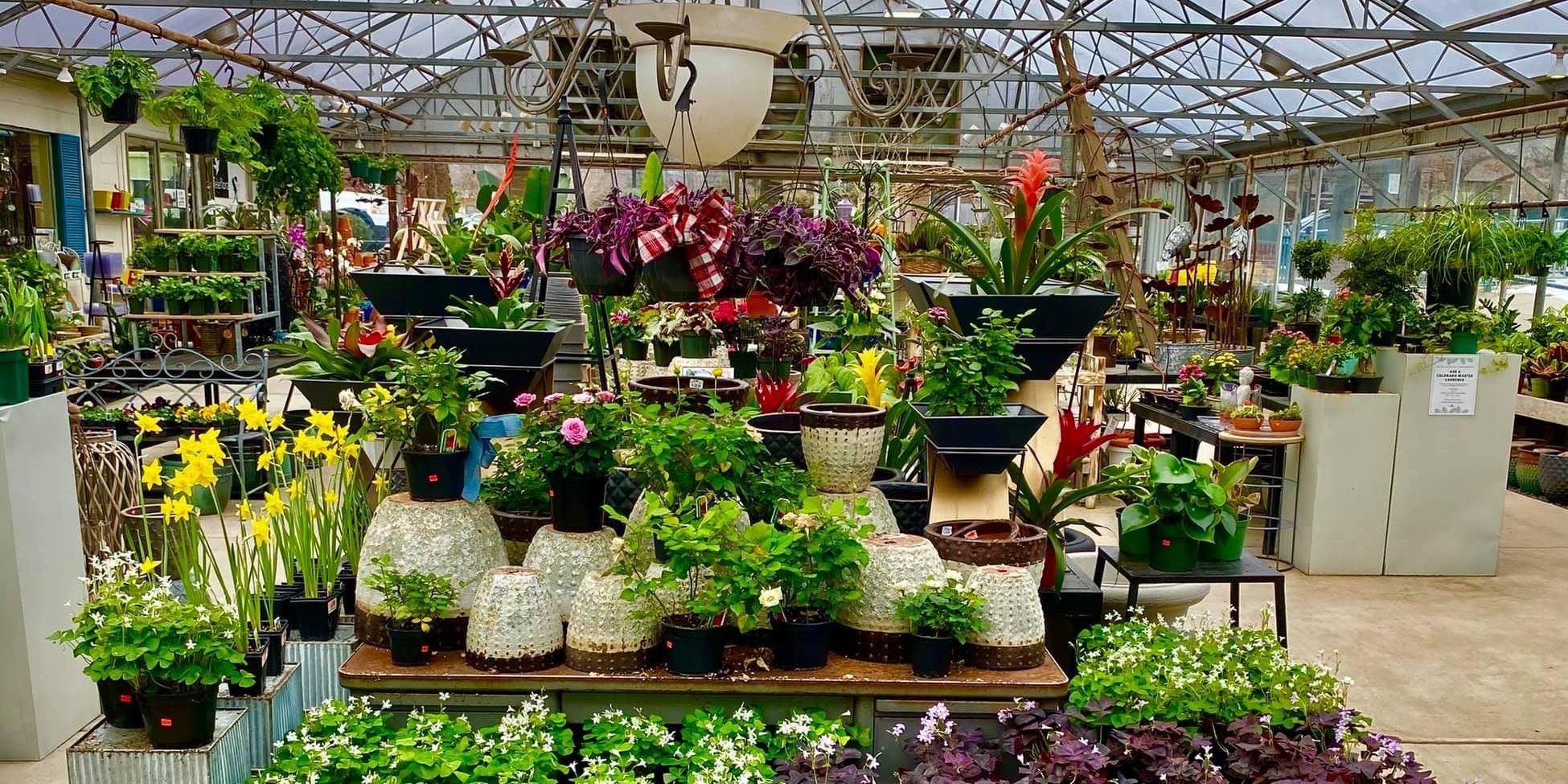 Lafayette Florist Gift Shop & Garden Ctr