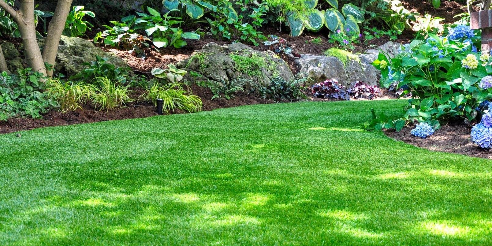 Washington Tree & Lawn Care