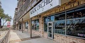 Black Orchid Salon