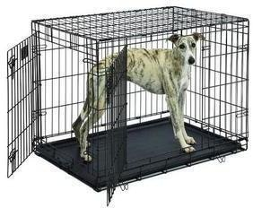 MidWest Life Stages Double Door Folding Dog Crate