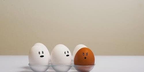 The Egg & U